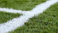 Close-up of white markings on the green football ground in movement outdoors video