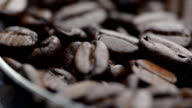 close-up rotation: coffee beans in a petri dish video