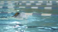 Close-up shot of Professional Female Swimmer Performing Front Crawl during Training in Swimming Pool video