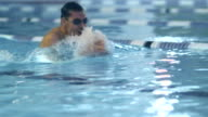 Close-up shot of Professional Swimmer Performing Butterfly Stroke during Training in Swimming Pool video