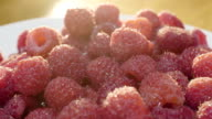 Closeup shot of vibrant, ripe raspberries in the morning light. video