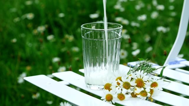 Close-up. Slowing down. Pour milk into a glass beaker. Beside lies a bouquet of daisies. Against the background there is a green daisy meadow video