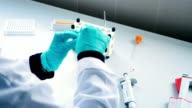 Close-up - the scientist is working with blood in a labaratory video