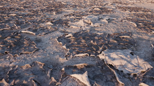 Close-up tilt up view of large areas of dry cracked mud video