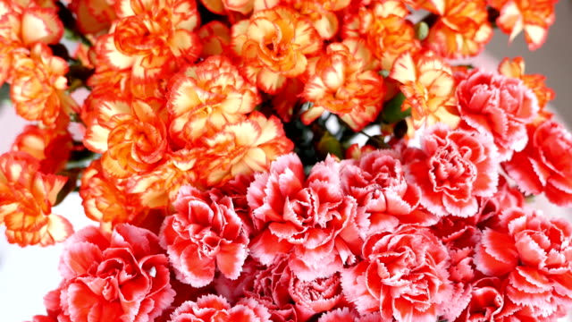 close-up, view from above, Flower bouquet , rotation, the floral composition consists of Bright yellow, orange and pink turkish Carnation video