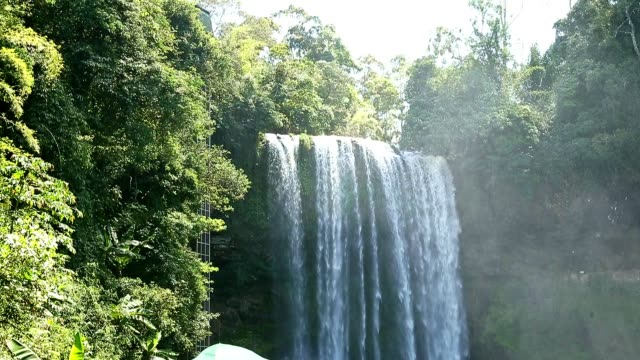 Close-up view to Waterfall in rainforest video