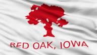 Closeup Waving National Flag of Red Oak City, Iowa video