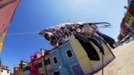 HD SUPER SLOW-MO: Clothesline In Venice video