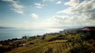 cloud flowing over vineyards video
