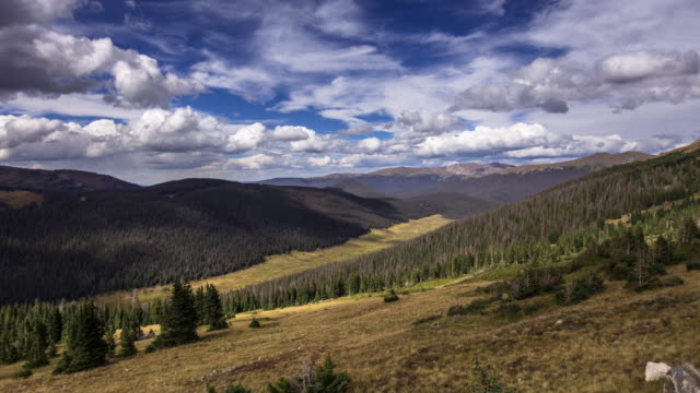 Cloud Shadows Over Rocky Mountain Forest - Time Lapse video