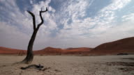 Cloud time lapse with dead tree at Sossusvlei. video