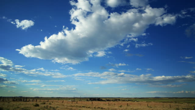 Cloudlapse over field video