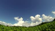 Clouds above landscape time lapse video