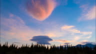 Clouds and green cypresses at sunset, time lapse, 4k video