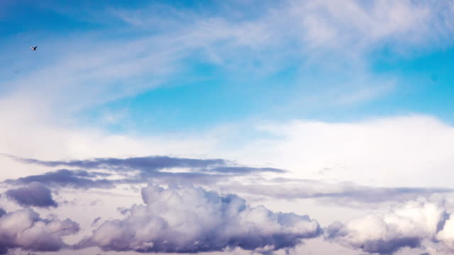 Clouds fly across the sky. time laps video