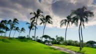 Clouds Over Palm Trees and Green Golf Course Landscape video