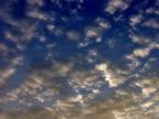 PAL: Clouds video