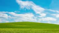 T/L 8K Cloudscape over beautiful green meadow video