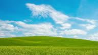 T/L 8K Cloudscape over beautiful meadow video