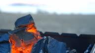 Coal burning in a brazier grill. video