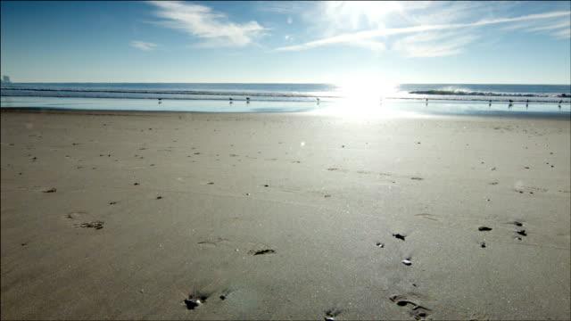 Coast - HD video