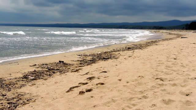 Coastal landscape video