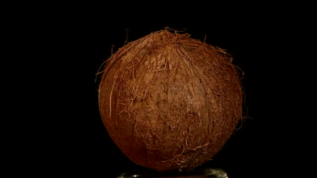Coconut isolated on black, rotation video
