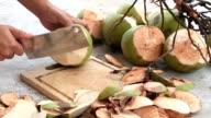 coconut video