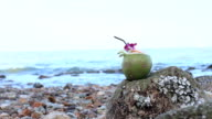 Coconut with beach video