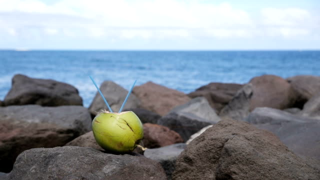 Coconut with drinking straw on the rocks video