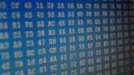 Code binary on the monitor. video