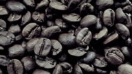 Coffee Bean video