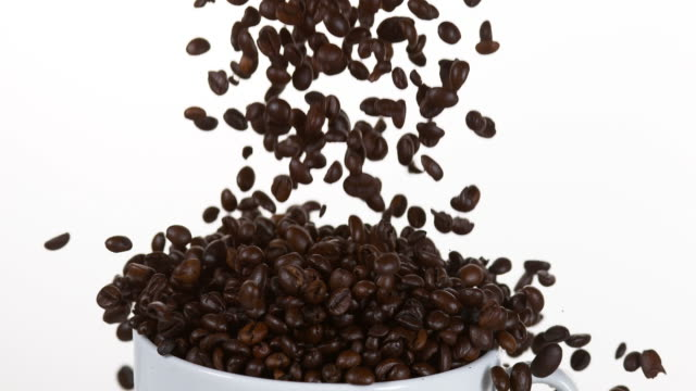 Coffee Beans Falling into a Cup against White Background, Slow Motion 4K video