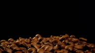 Coffee beans falling video