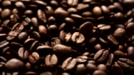 Coffee beans, fly over video