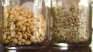Coffee beans roast in different colors. Green beans, Light roast, Medium roast, Dark roast video