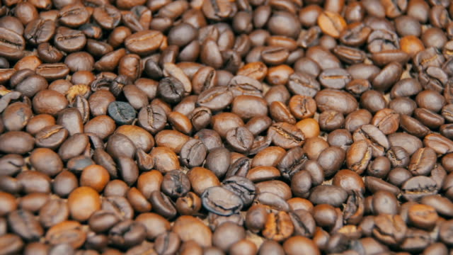 Coffee Beans Rotate video