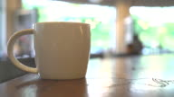 coffee cup in a coffee shop video