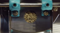 Coffee Roaster Turning Beans video