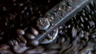 Coffee Roasting Rotation video