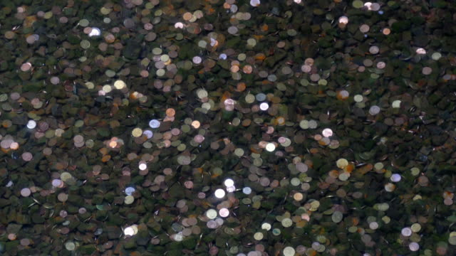 Coins in the pond bottom. video