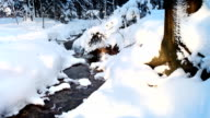 Cold stream and snowdrifts in the forest, winter season. video