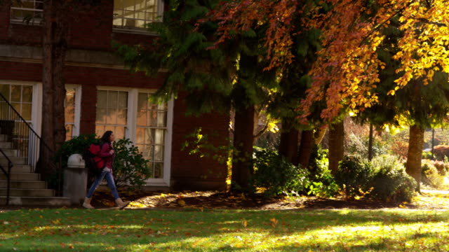 College student walking through campus in fall video