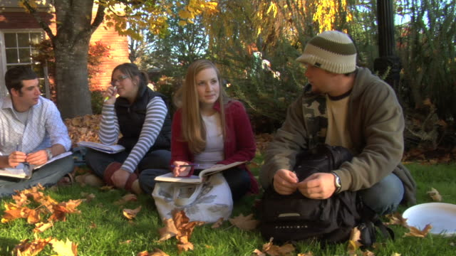 College students sitting in grass video