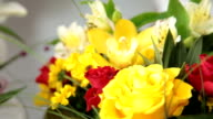DOLLY: Color Your Day With  Bouquet video