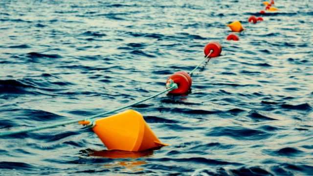 Colored buoys floating in a seaport video