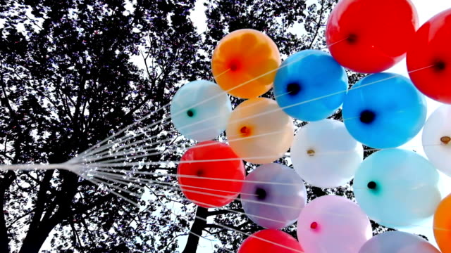 colorful balloon under tree video