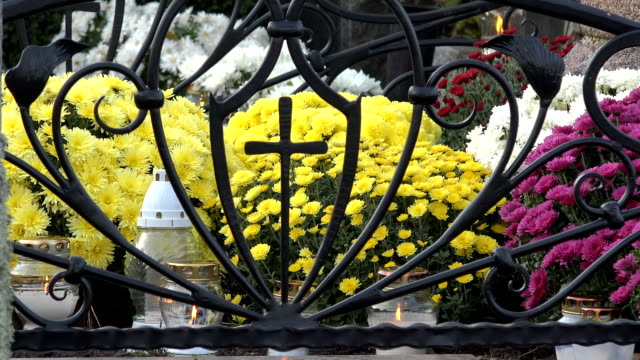 colorful chrysanthemum flowers and candle lanterns burn on grave stone. video