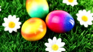 Colorful Easter Eggs video