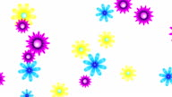Colorful flowers loop video
